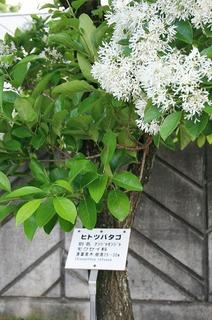 駒ヶ根-22.jpg